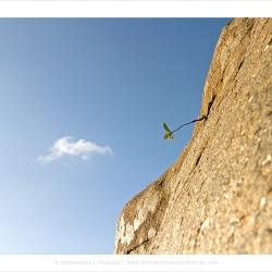 20110508-bellary-ctb-0142