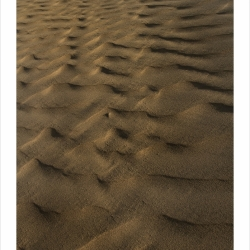 patterns_mg_8344
