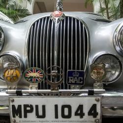 Vintage Cars  - Jaguar