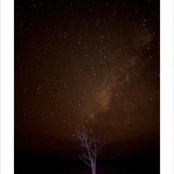 20111021-andaman-5894