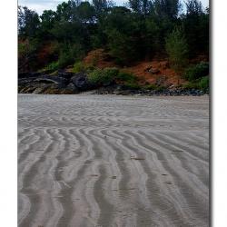 bindroor_beach_pattern