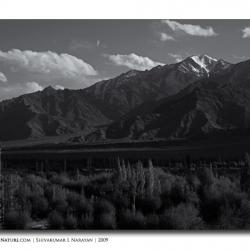 fromthikseymonastery_landscape_ladakh