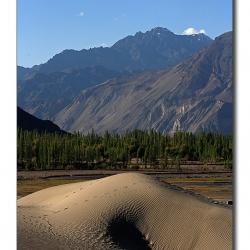 himalayanvariety_landscape_ladakh
