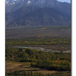 landscape_ladakh_fromthiksey
