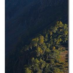 landscape_ladakh_livinginedge