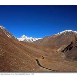 landscape_ladakh_roadinvalley