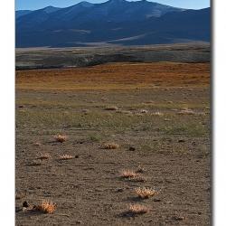 landscape_ladakh_tsokar