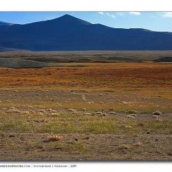 landscape_ladakh_wideworld