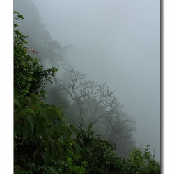 monsoon_moods