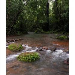 monsoonstreams_sirsi