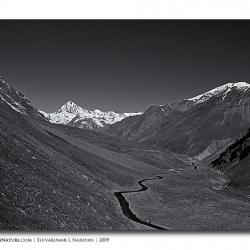 road_landscape_ladakh