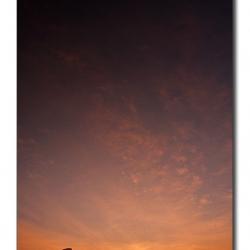 sunrise_hosurroad_mg_8100