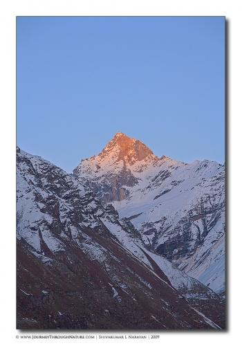 landscape ladakh rohtangpass2