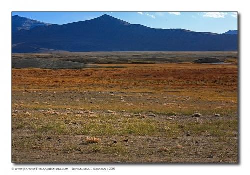 landscape ladakh wideworld