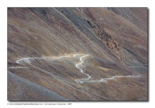 landscape ladakh z