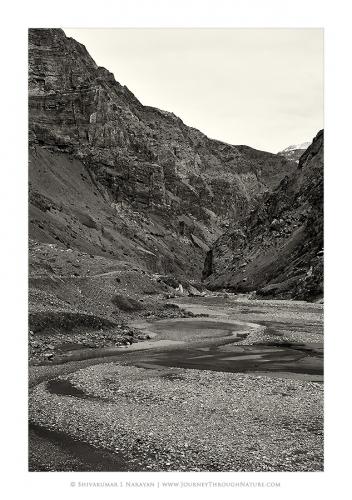 landscape pinvalley scurve