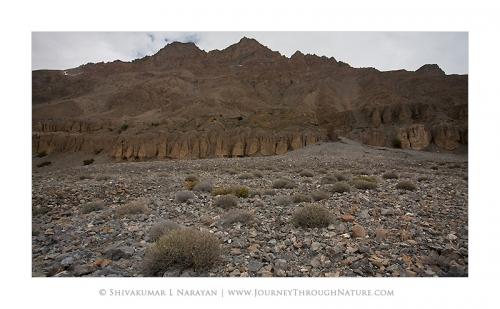 landscape spiti enroutetopinvalley