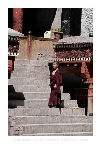 monksworld 01