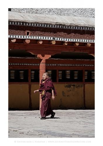 monksworld 02