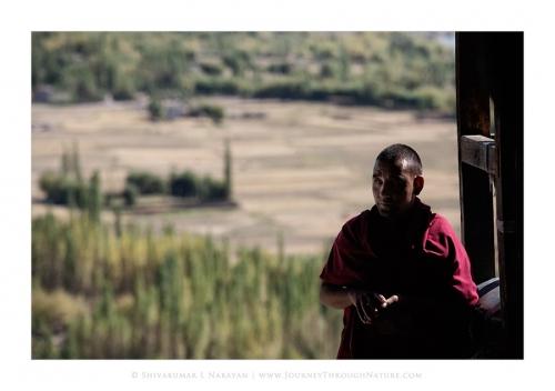 monksworld 08