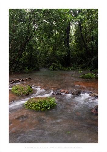 monsoonstreams sirsi