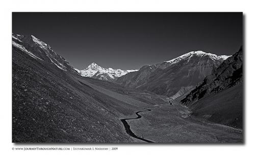 road landscape ladakh