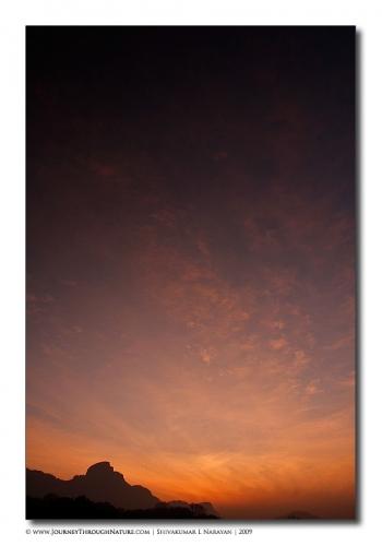 sunrise hosurroad mg 8100